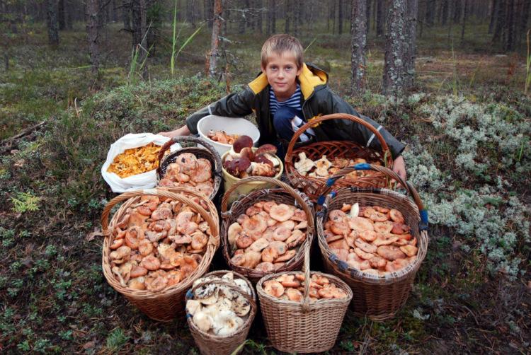 форум рыбаков санкт петербурга новости с водоемов
