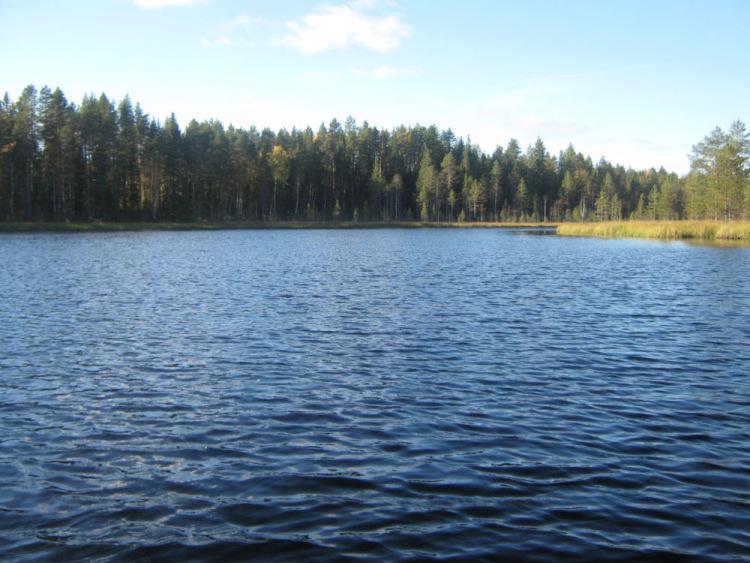 озеро рыбалка корпиярви
