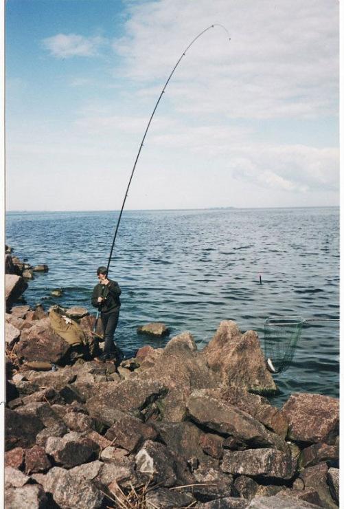 ловим спиннингом на финском заливе