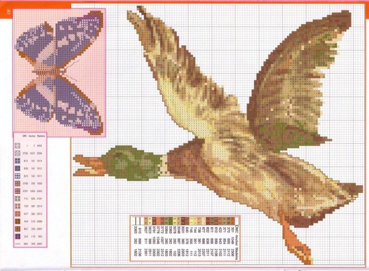 Утка » Вышивка, бесплатные схемы вышивки крестом, рукоделье 48