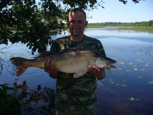 рыбалка на озере большое белое